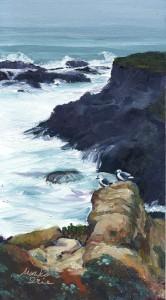 Seagulls on Headlands