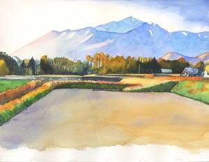549. Mondrian in Rice Field process 4 Watercolor painting by Mariko Irie