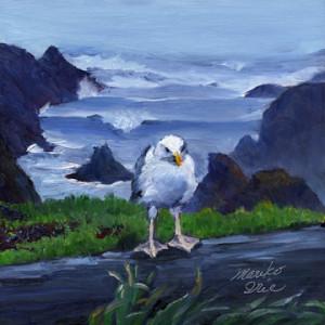 seagulheadlands