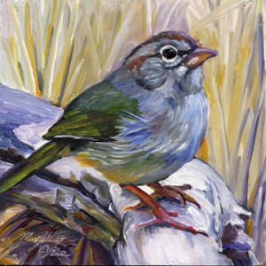 olivesparrow