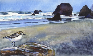 807. A bird at the Beach_blog